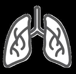 pregled pulmologa